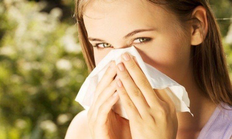 allergia di Primavera